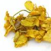 金莲花茶农产品电子商务专业供应——价格实惠的口蘑蘑菇
