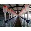 四川猪场设备定制加工/开元畜牧规格齐全质优价廉